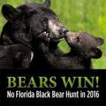 bears_win