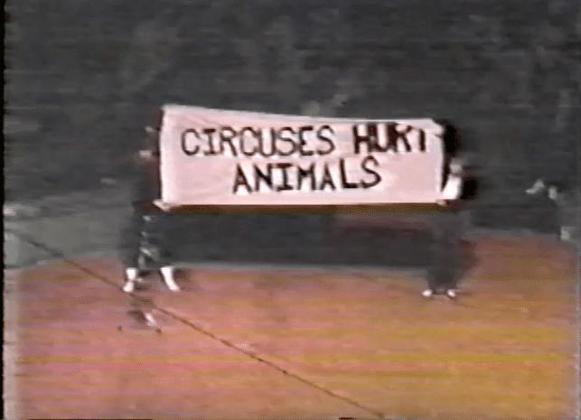 Susan Hargreaves Protesting Circus Act