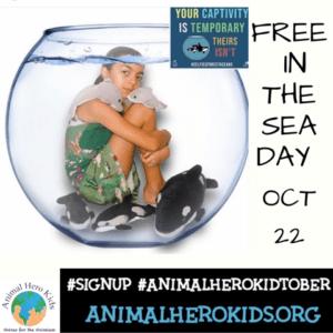 Thursday, October 22 Activity